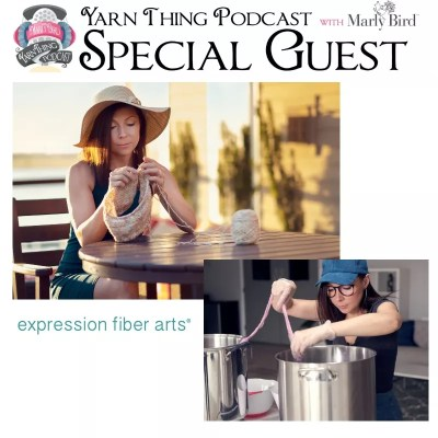 Expression Fiber Arts talks about Dyeing Yarn on the Yarn Thing Podcast