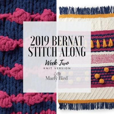 JOANN Stitchalong Bernat Knit Blanket Clue 2