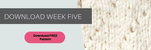 Download Week 5 of the Bernat Stich Along with Yarnspirations, JOANN and Marly Bird