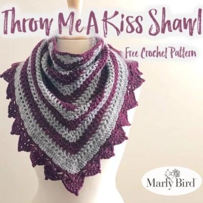 Beginner Lace Border Crochet Shawl Pattern