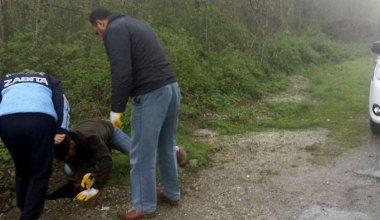 Kartepe Zabıtası logara düşen sokak köpeğini kurtardı
