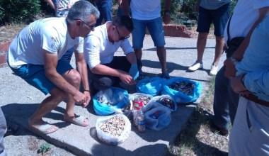 Burhaniye'de mavi bayraklı Ören plajında çevre temizliği yapıldı