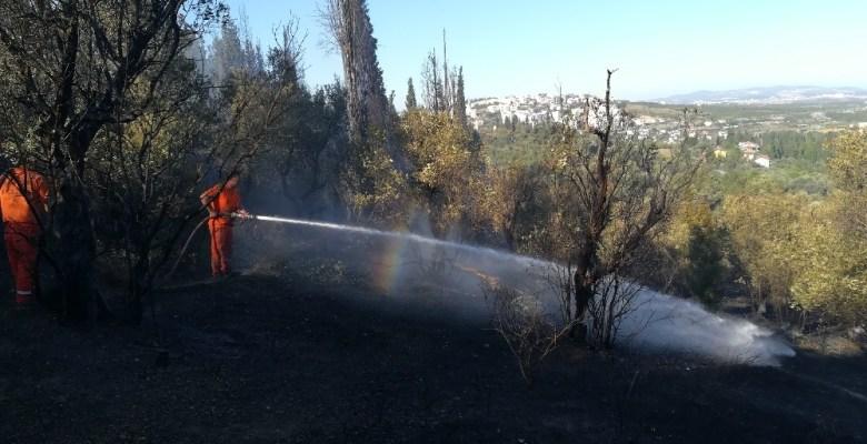 Gebze'de 3 yerde çıkan yangında 20 dönüm sit alanı zarar gördü