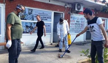 Sokak hayvanlarından yayılan keneler Eski Garaj'ı bastı imdada Ayvalık Belediyesi yetişti