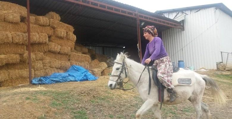 Kadın çoban iş başında