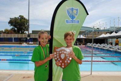 Stingray trophy