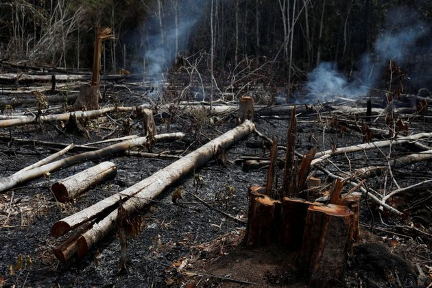 Amazonie - incendies