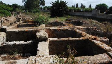 Lixus ville antique maure.