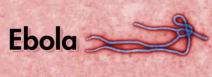 K-ebola-enHD-AR1