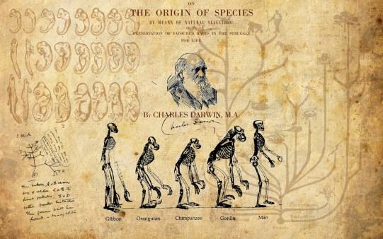 blog_Charles_Darwin_origine