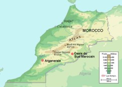 moroccobr