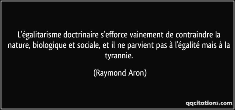Quote-raymond-aron