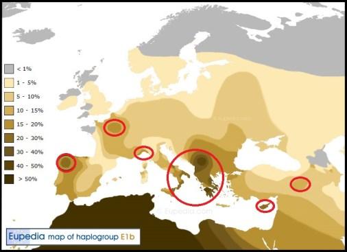 Haplogroup-E1b1bWEB