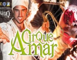 Offrez-vous un Moment de Magie grâce au Cirque Amar à seulement 80dhs au lieu de 120!
