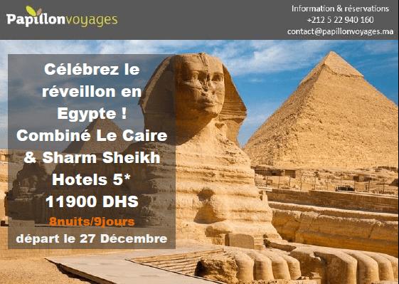 CELEBREZ LE REVEILLON EN EGYPTE : COMBINE LE CAIRE & SHARM SHEIKH A 11900DHS