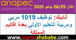 أنابيك: توظيف 1019 مربيين التعليم الأولي بعدة أقاليم المملكة