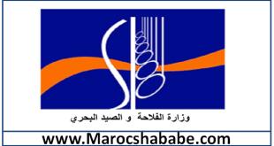 مرشحي مباراة وزارة الفلاحة والصيد البحري قطاع الفلاحة 197 منصب