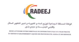 RADEEJ Recrutement plusieurs profils 2021 (31 Postes)