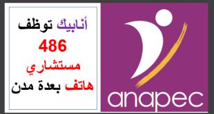 Anapec recrute 486 téléconseillers sur plusieurs villes
