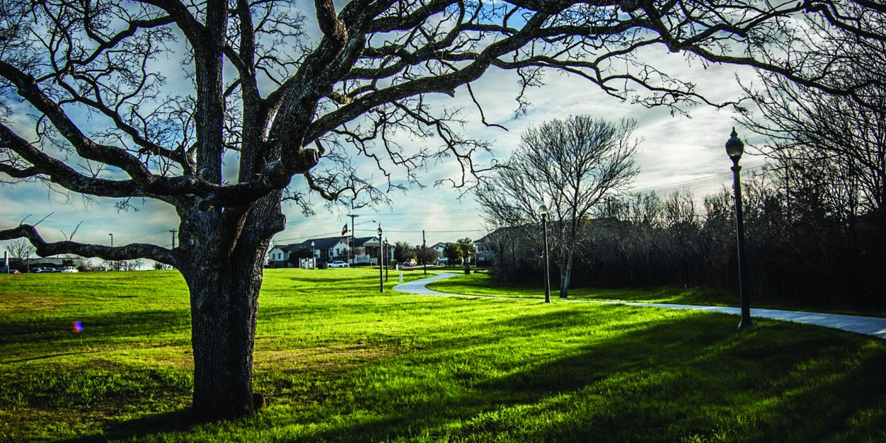 PARKING ALLOWED: A GUIDE TO AGGIELAND GREEN SPACE