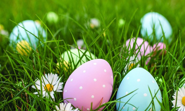 Hop into Easter with BCS Egg Hunts!