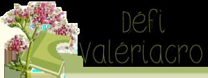 Logo Défi ValeriAcr0