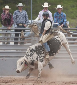 A cowboy competes in the bull-riding portion of the Great Lakes Rodeo. (photo by Ron Caspi)