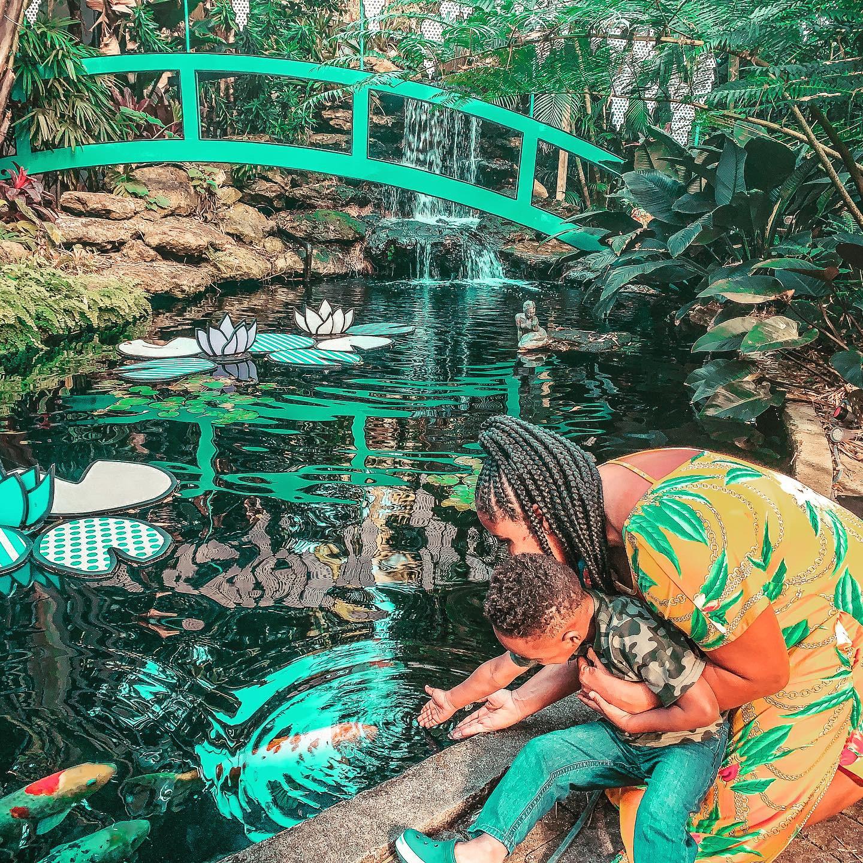 Sarasota Selby Gardens_Touching Fish