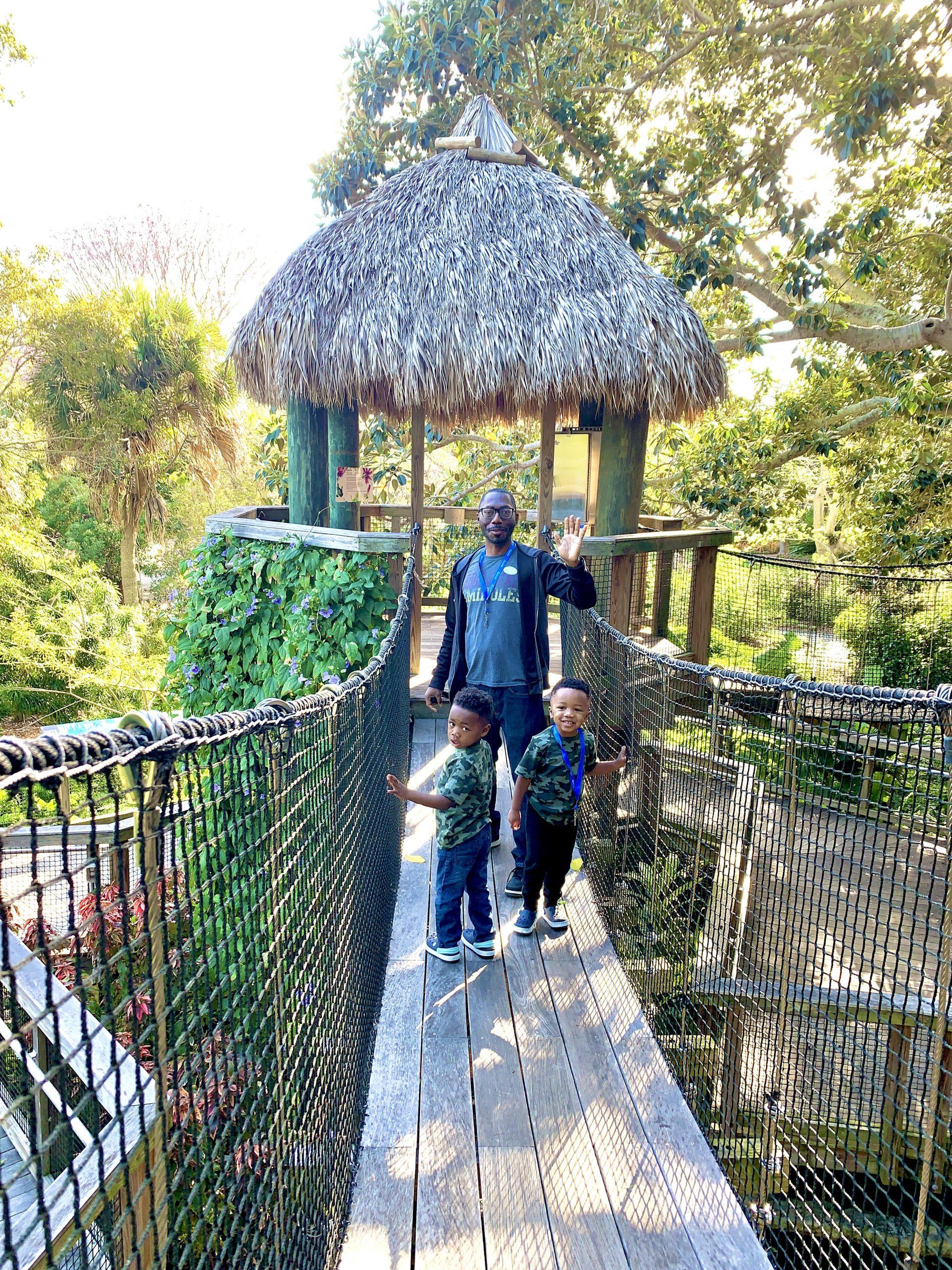 Sarasota Selby Gardens_Tree House