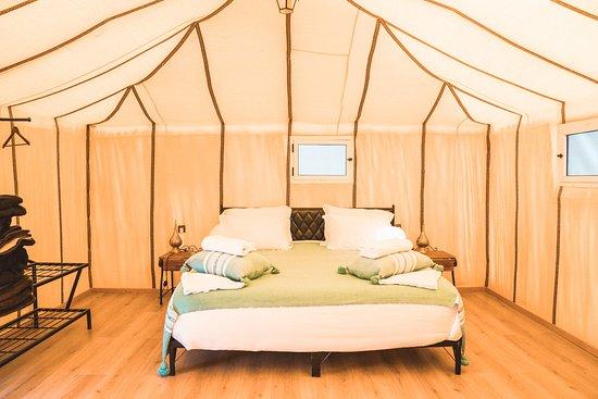 Alojamiento en el Desierto Royal Oasis Camp