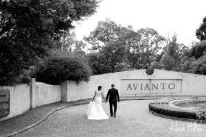 Avianto-Marlon-90[1]