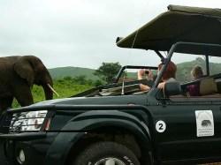 Romantic Honeymoon Destination in KZN
