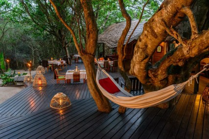 Evenings on the deck at Kosi Forest Lodge