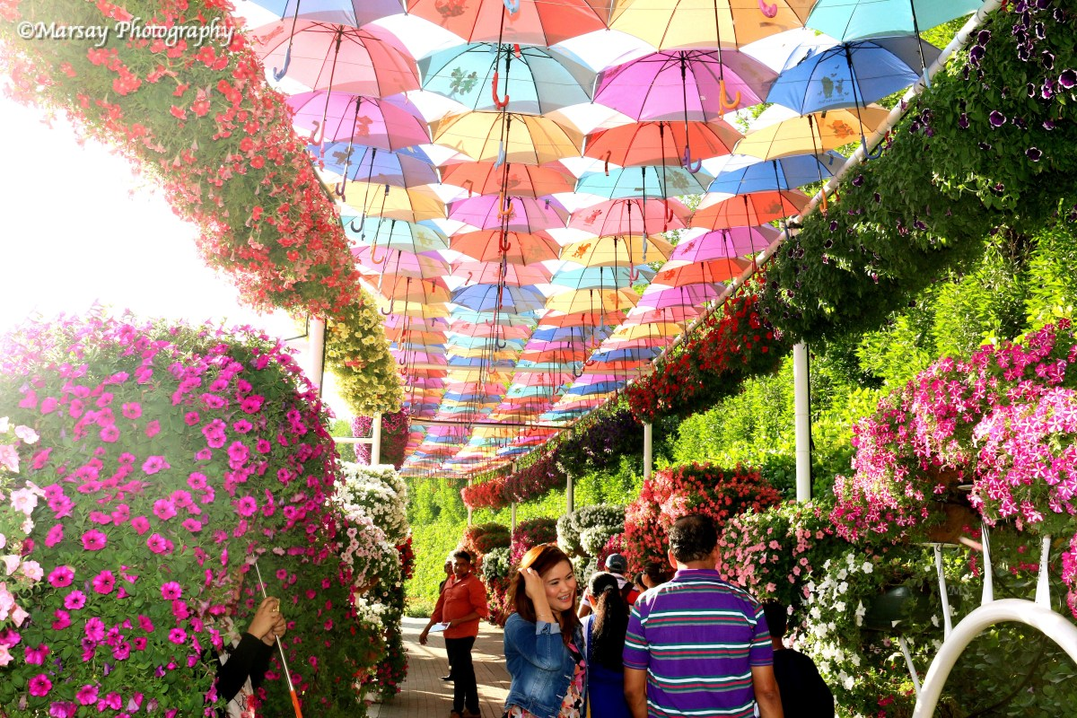 One of my Favourite Displays?, Take cover from the Sun-rays, under this walk way of Rainbow Coloured Umbrellas.