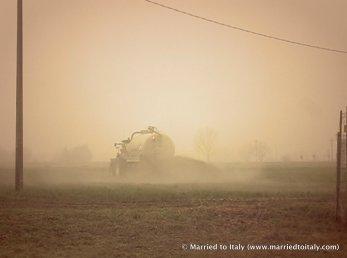 fields with sisso