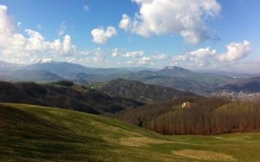 hilly fields