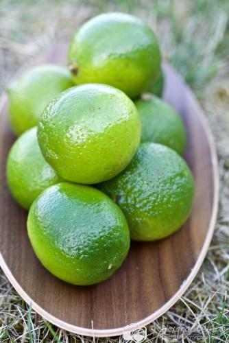 Mojitos menthe citron