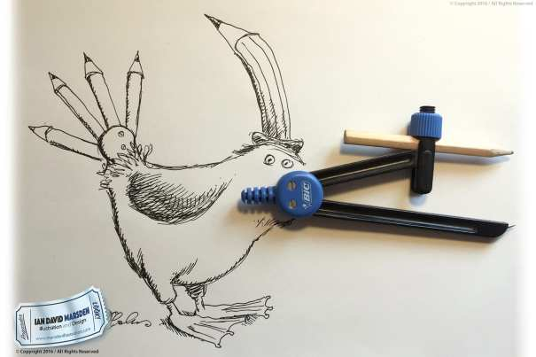 Funny Bird Sketch by Ian Marsden