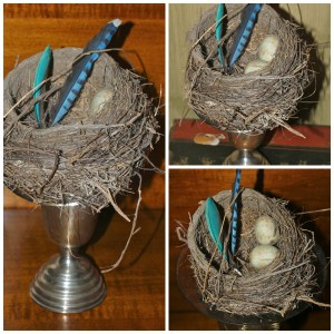 PicMonkey Collage birdi nest