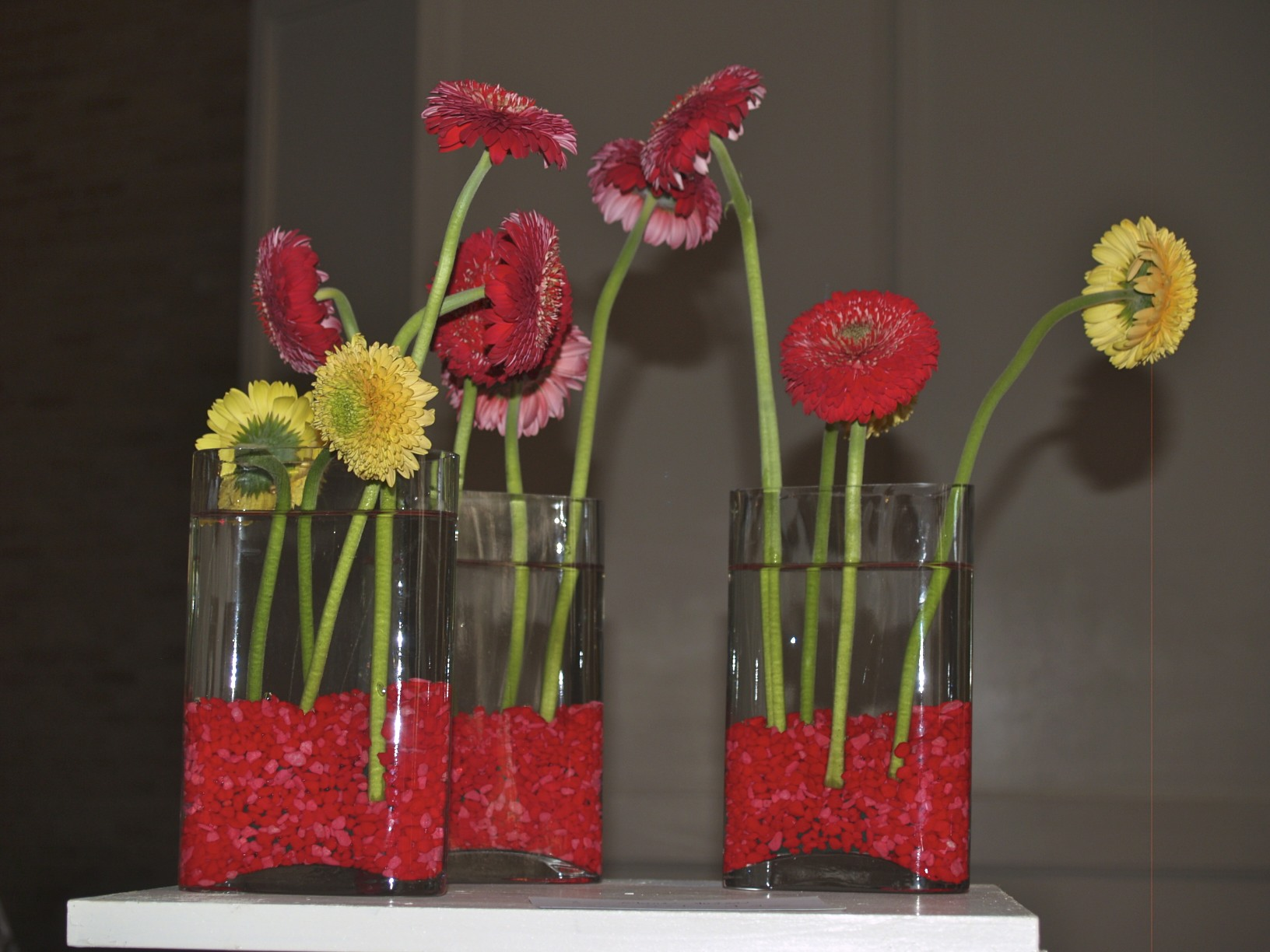 flower arranging, gerbera daisy
