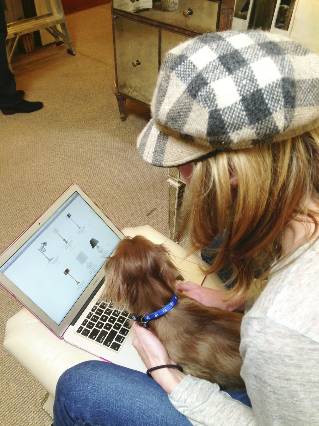 dog on computer
