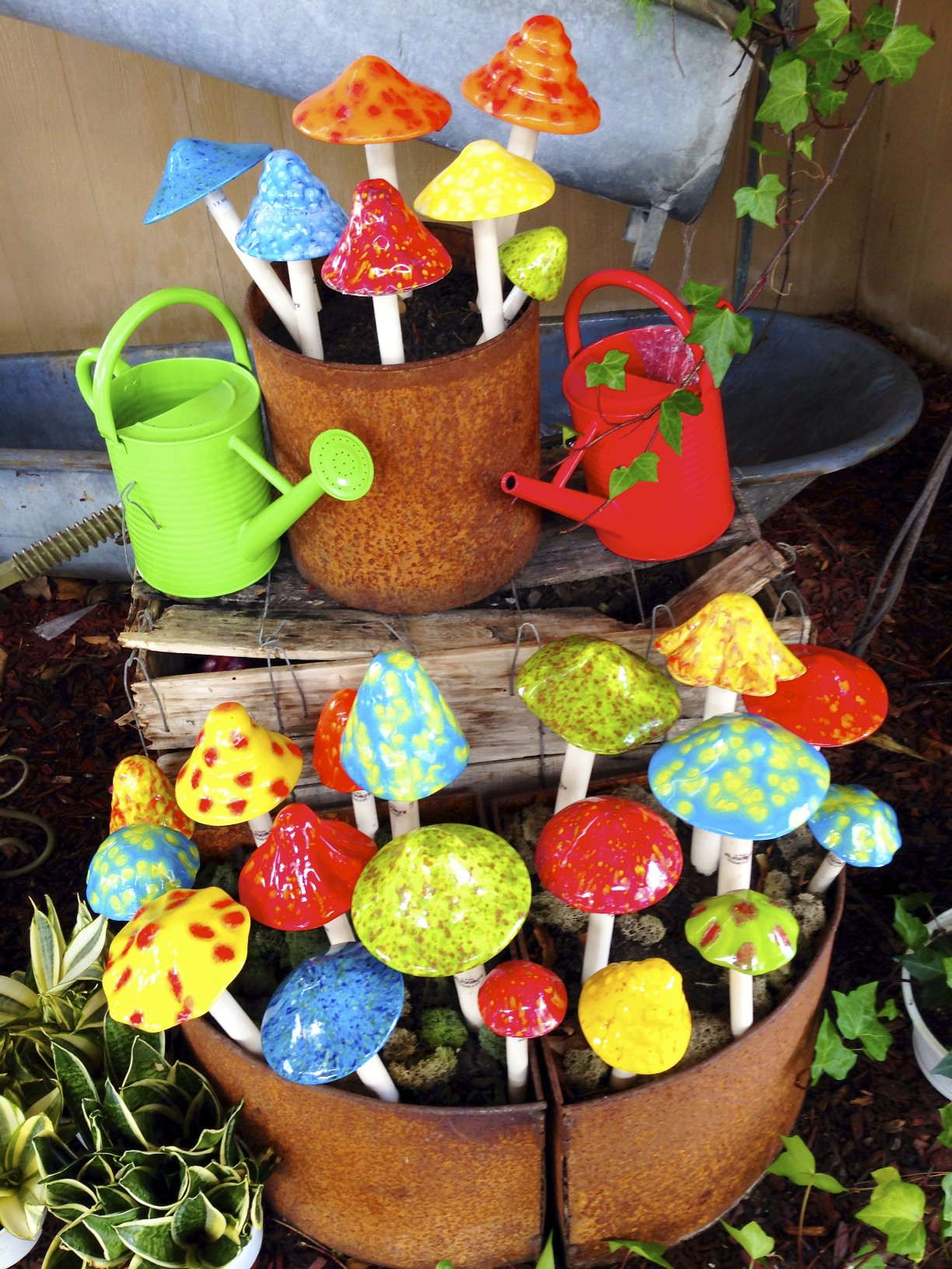 watering cans and mushrooms