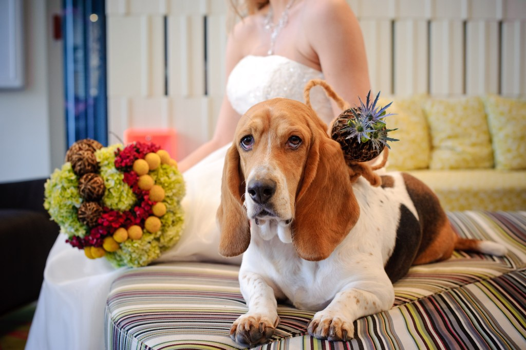 dog bride bouquet
