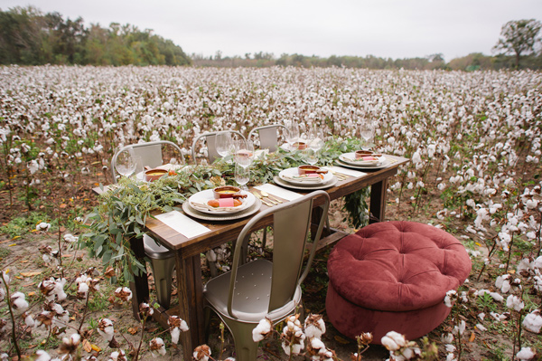 cotton field dining