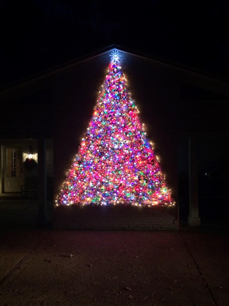 Christmas Tree Light Display