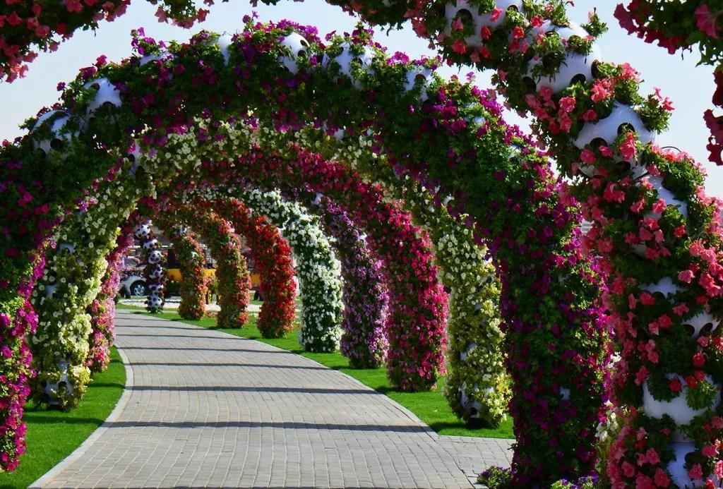 Dubai's Miracle Garden