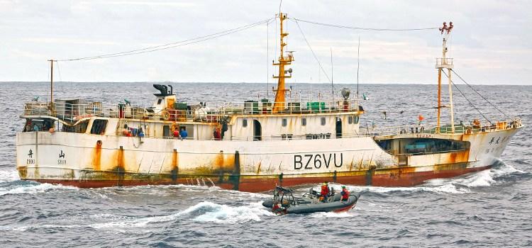 Fisheries observers get help