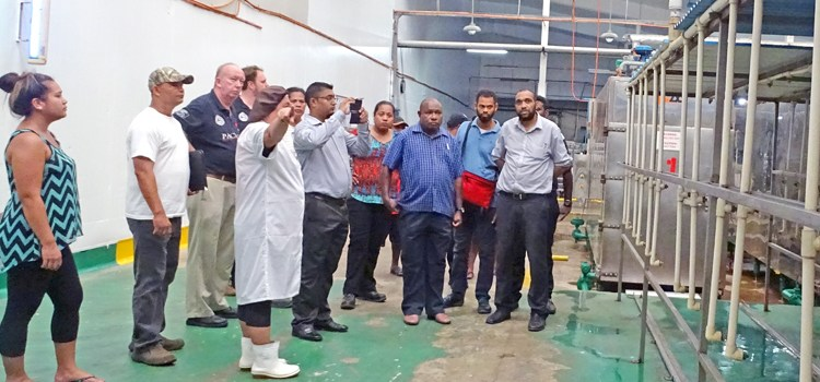 Regional tuna training held