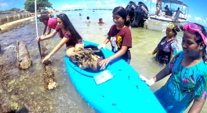 Dozens of young people got out to clean up the Uliga lagoon last weekend as part of World Oceans Day celebrations. Photo: Lyla Lemari.