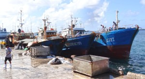 Longline vessels, such as these docked in Majuro, are the focus of several PNA management initiatives in 2019 and beyond. Photo: Hilary Hosia.